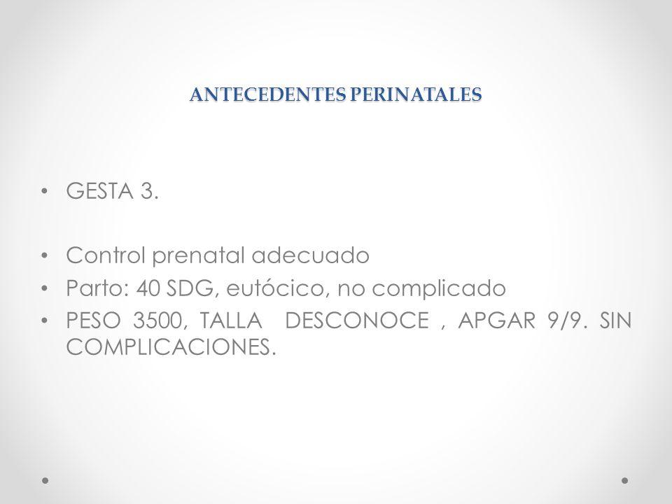 ANTECEDENTES PERINATALES GESTA 3.