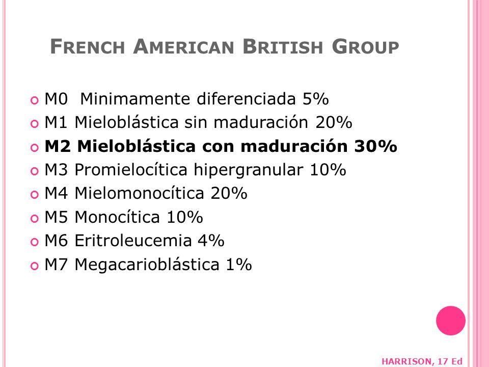 F RENCH A MERICAN B RITISH G ROUP M0 Minimamente diferenciada 5% M1 Mieloblástica sin maduración 20% M2 Mieloblástica con maduración 30% M3 Promielocítica hipergranular 10% M4 Mielomonocítica 20% M5 Monocítica 10% M6 Eritroleucemia 4% M7 Megacarioblástica 1% HARRISON, 17 Ed