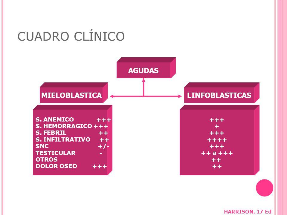 CUADRO CLÍNICO AGUDAS MIELOBLASTICALINFOBLASTICAS S.