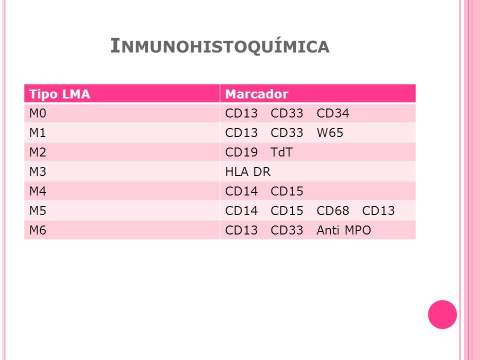 I NMUNOHISTOQUÍMICA Tipo LMAMarcador M0CD13 CD33 CD34 M1CD13 CD33 W65 M2CD19 TdT M3HLA DR M4CD14 CD15 M5CD14 CD15 CD68 CD13 M6CD13 CD33 Anti MPO