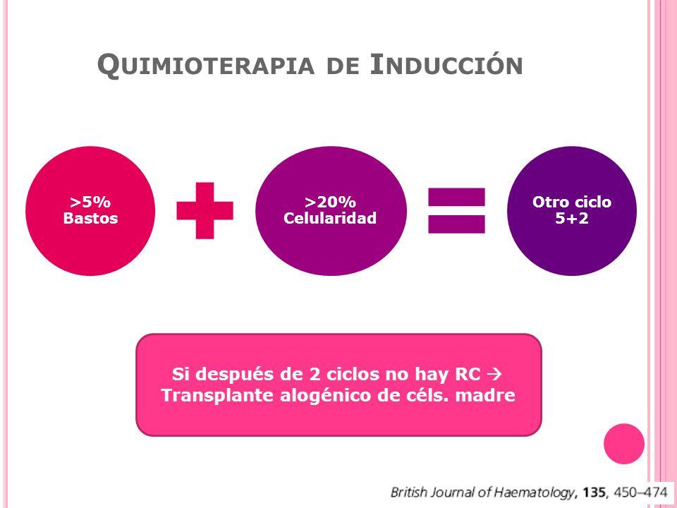 Q UIMIOTERAPIA DE I NDUCCIÓN >5% Bastos >20% Celularidad Otro ciclo 5+2 Si después de 2 ciclos no hay RC Transplante alogénico de céls.