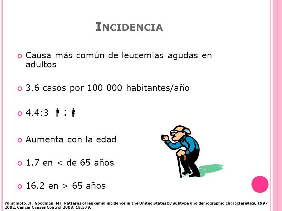 I NCIDENCIA Causa más común de leucemias agudas en adultos 3.6 casos por 100 000 habitantes/año 4.4:3 : Aumenta con la edad 1.7 en < de 65 años 16.2 en > 65 años Yamamoto, JF, Goodman, MT.