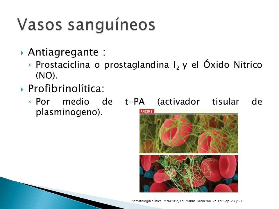 Antiagregante : Prostaciclina o prostaglandina I 2 y el Óxido Nítrico (NO). Profibrinolítica: Por medio de t-PA (activador tisular de plasminogeno). H