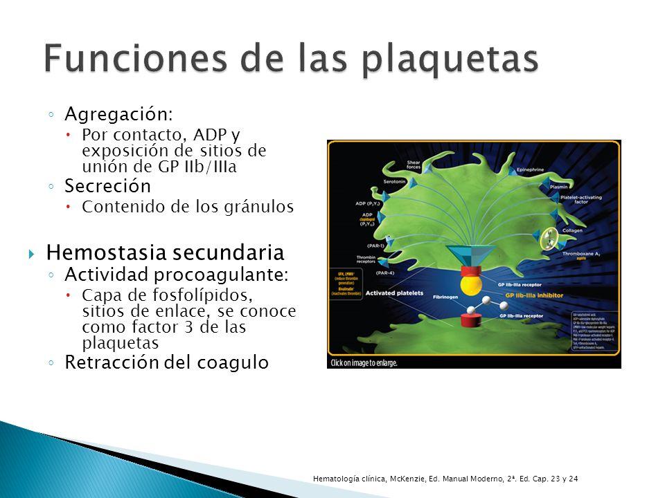 Funciones de las plaquetas Agregación: Por contacto, ADP y exposición de sitios de unión de GP IIb/IIIa Secreción Contenido de los gránulos Hemostasia