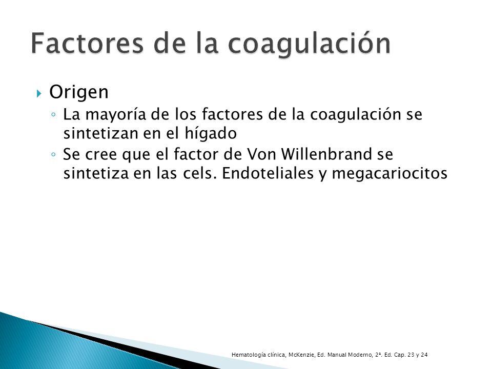 Origen La mayoría de los factores de la coagulación se sintetizan en el hígado Se cree que el factor de Von Willenbrand se sintetiza en las cels. Endo