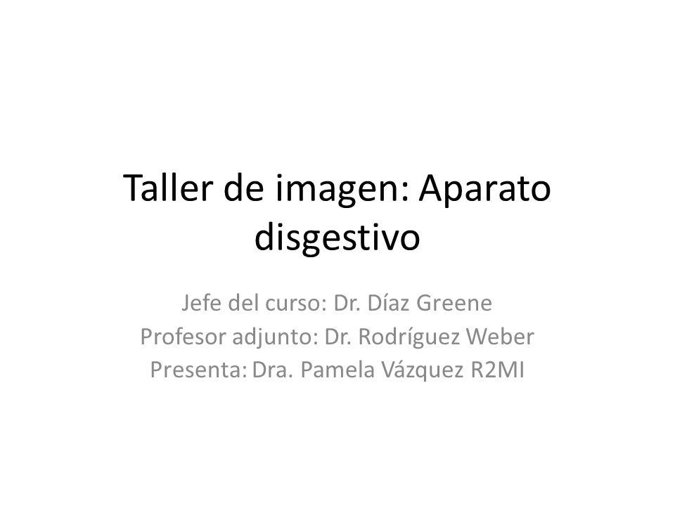 Taller de imagen: Aparato disgestivo Jefe del curso: Dr. Díaz Greene Profesor adjunto: Dr. Rodríguez Weber Presenta: Dra. Pamela Vázquez R2MI