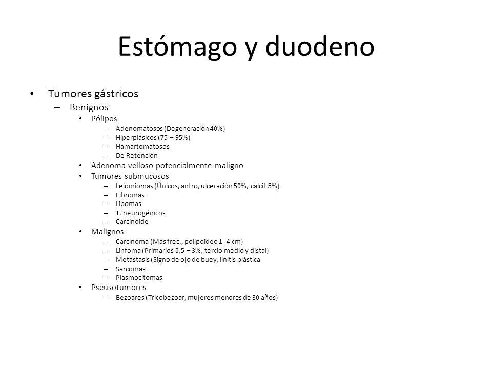 Estómago y duodeno Tumores gástricos – Benignos Pólipos – Adenomatosos (Degeneración 40%) – Hiperplásicos (75 – 95%) – Hamartomatosos – De Retención A