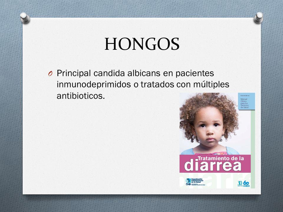 HONGOS O Principal candida albicans en pacientes inmunodeprimidos o tratados con múltiples antibioticos.