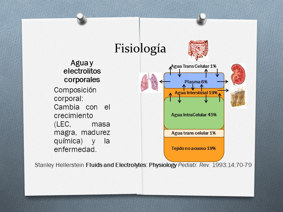 Fisiología Stanley Hellerstein Fluids and Electrolytes: Physiology Pediatr.