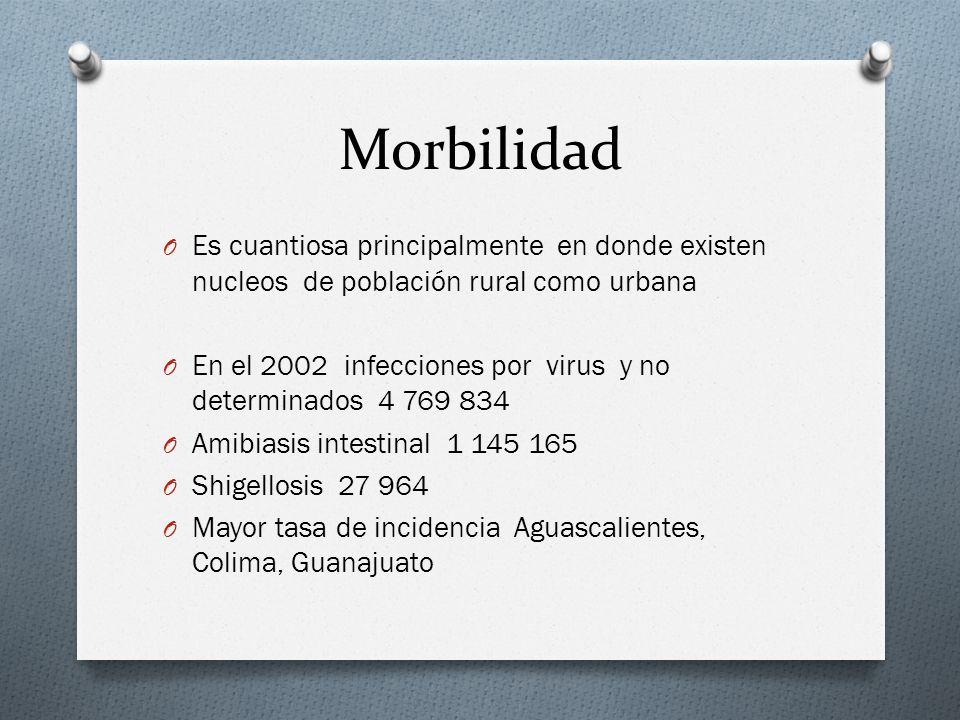 Morbilidad O Es cuantiosa principalmente en donde existen nucleos de población rural como urbana O En el 2002 infecciones por virus y no determinados