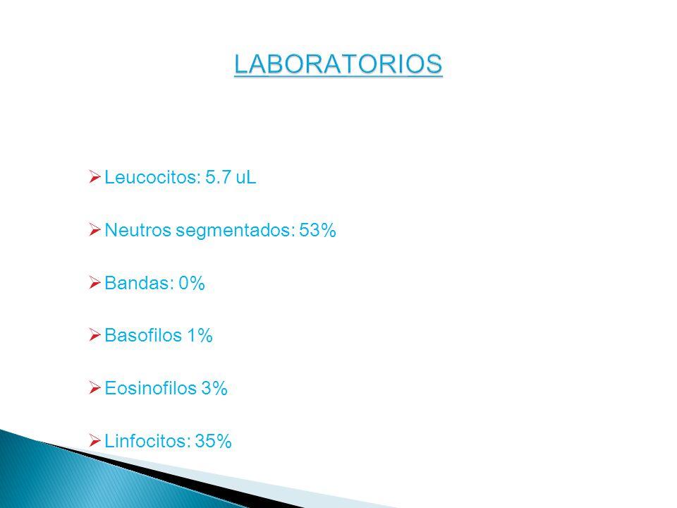Leucocitos: 5.7 uL Neutros segmentados: 53% Bandas: 0% Basofilos 1% Eosinofilos 3% Linfocitos: 35%