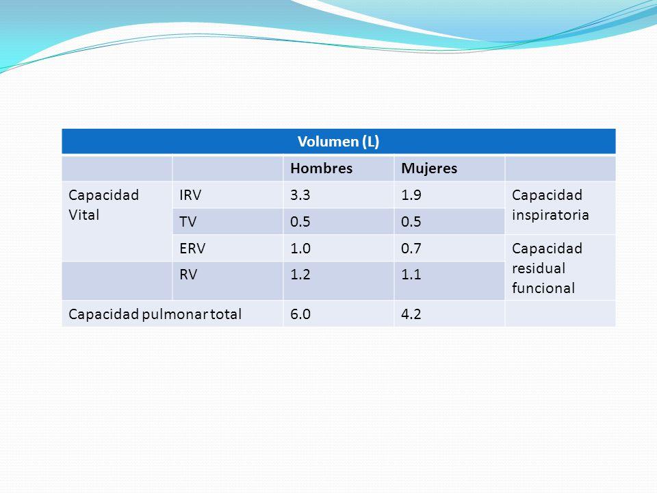 Volumen (L) HombresMujeres Capacidad Vital IRV3.31.9Capacidad inspiratoria TV0.5 ERV1.00.7Capacidad residual funcional RV1.21.1 Capacidad pulmonar tot