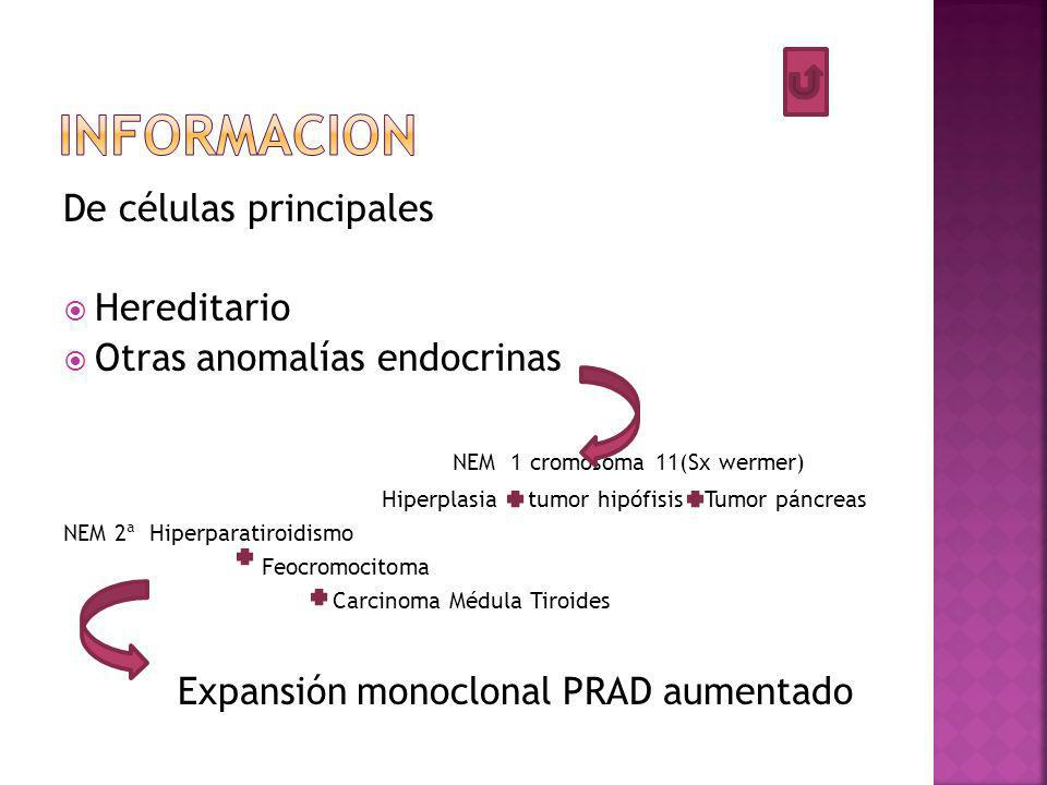 De células principales Hereditario Otras anomalías endocrinas NEM 1 cromosoma 11(Sx wermer) Hiperplasia tumor hipófisis Tumor páncreas NEM 2ª Hiperparatiroidismo Feocromocitoma Carcinoma Médula Tiroides Expansión monoclonal PRAD aumentado