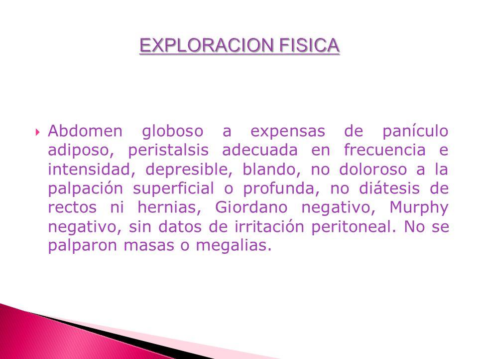 Abdomen globoso a expensas de panículo adiposo, peristalsis adecuada en frecuencia e intensidad, depresible, blando, no doloroso a la palpación superf