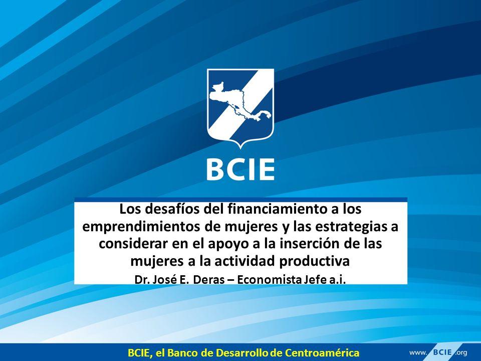 Los desafíos del financiamiento a los emprendimientos de mujeres y las estrategias a considerar en el apoyo a la inserción de las mujeres a la actividad productiva Dr.
