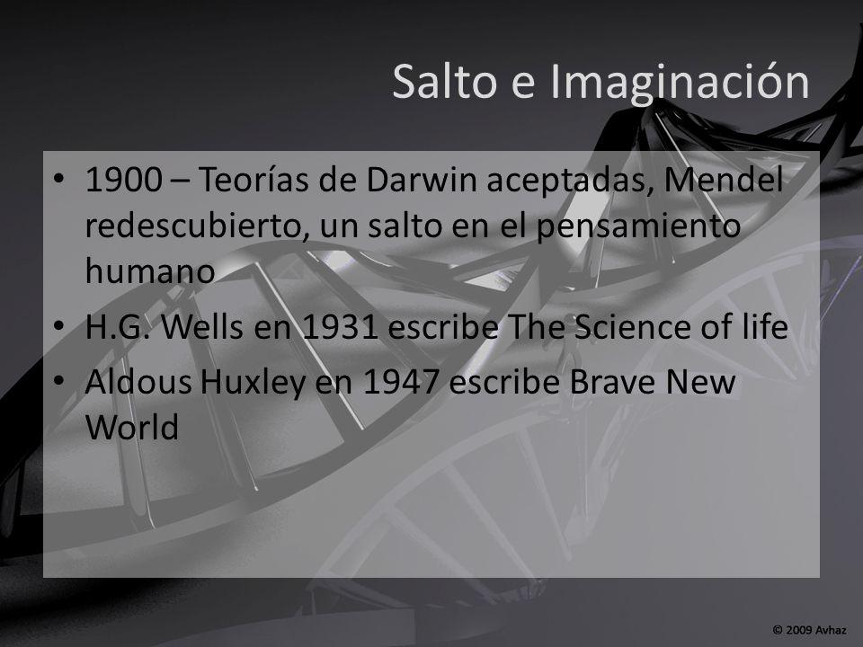 Proyecto Genoma Humano 1984 inició el HGP en UCLA 1988 el DoE y los NIH fundan HGI, dirigido por James Watson 1990 inicia formalmente el HGP, duraría 15 años 1994, Craig Venter, Celera Genomics 6 abril 2000 se anunciaba el borrador 15 y 16 febrero Nature y Science publicaban el 99.9% del genoma Completo 2003, ultracompleto, 2006