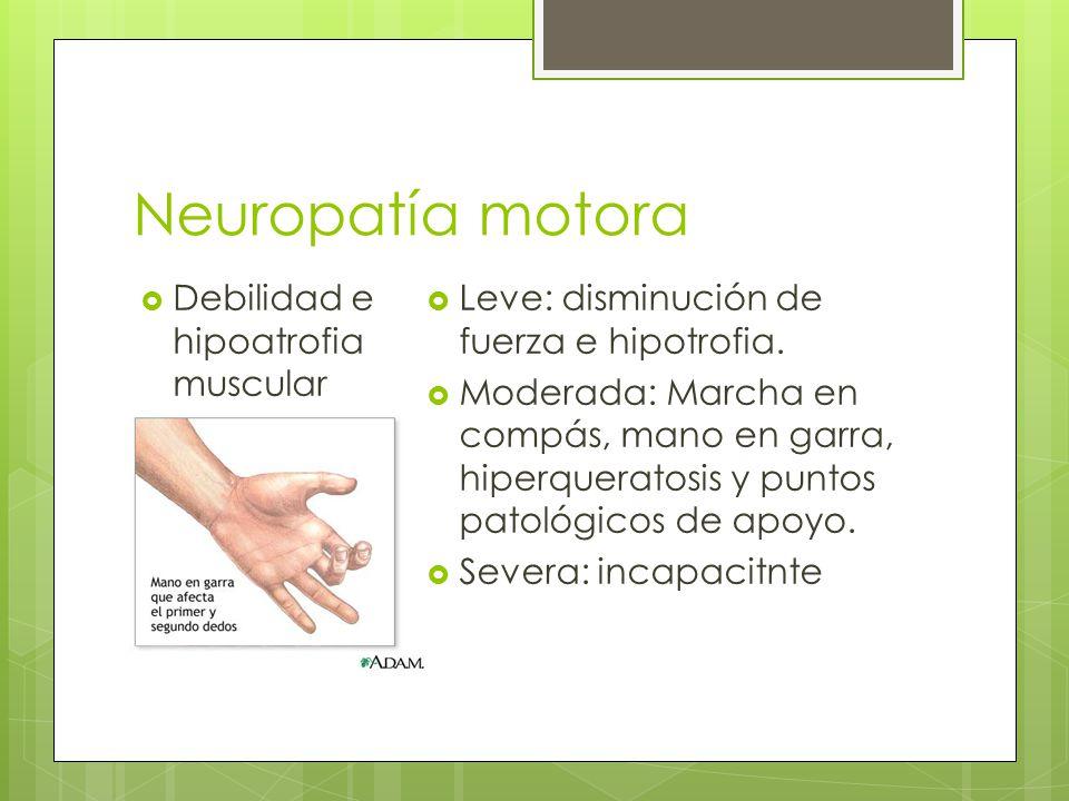 Neuropatía motora Debilidad e hipoatrofia muscular Leve: disminución de fuerza e hipotrofia. Moderada: Marcha en compás, mano en garra, hiperqueratosi