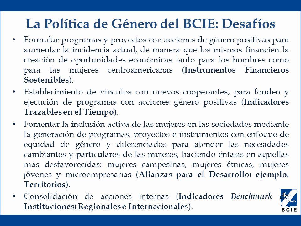 Formular programas y proyectos con acciones de género positivas para aumentar la incidencia actual, de manera que los mismos financien la creación de oportunidades económicas tanto para los hombres como para las mujeres centroamericanas ( Instrumentos Financieros Sostenibles ).
