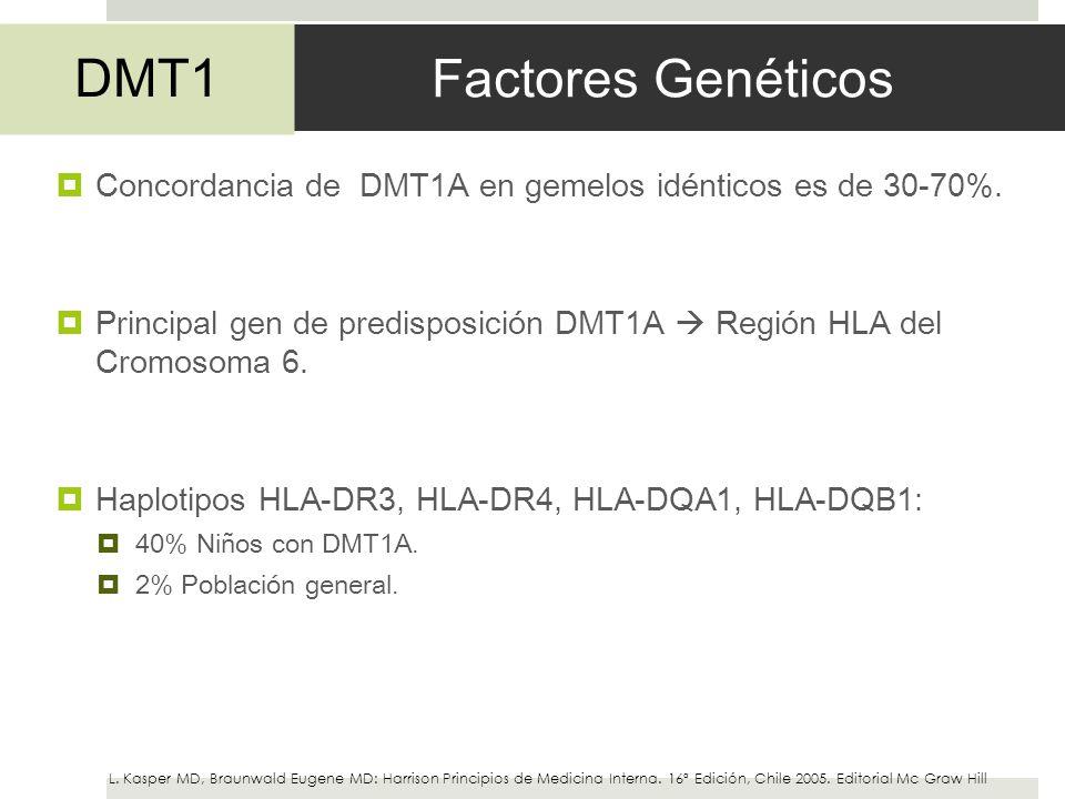 Factores Genéticos Concordancia de DMT1A en gemelos idénticos es de 30-70%. Principal gen de predisposición DMT1A Región HLA del Cromosoma 6. Haplotip
