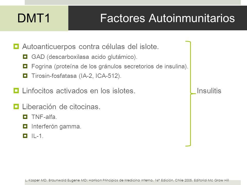 Factores Autoinmunitarios Autoanticuerpos contra células del islote. GAD (descarboxilasa acido glutámico). Fogrina (proteína de los gránulos secretori