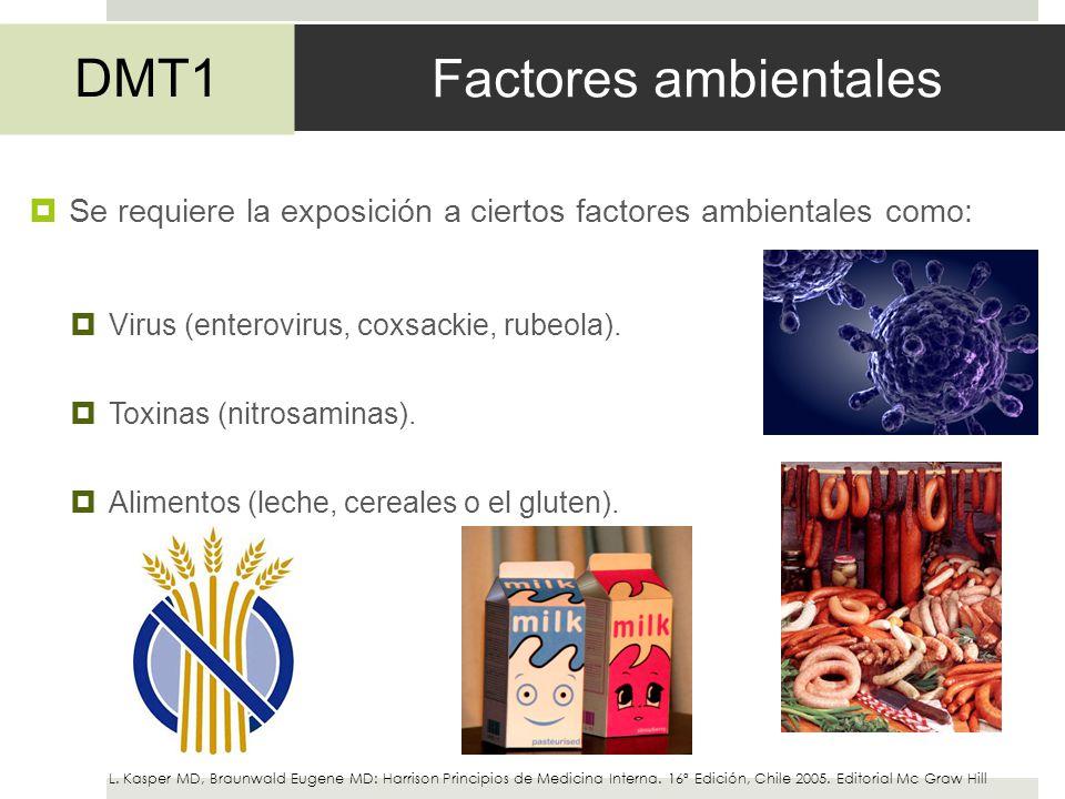Factores ambientales Se requiere la exposición a ciertos factores ambientales como: Virus (enterovirus, coxsackie, rubeola). Toxinas (nitrosaminas). A