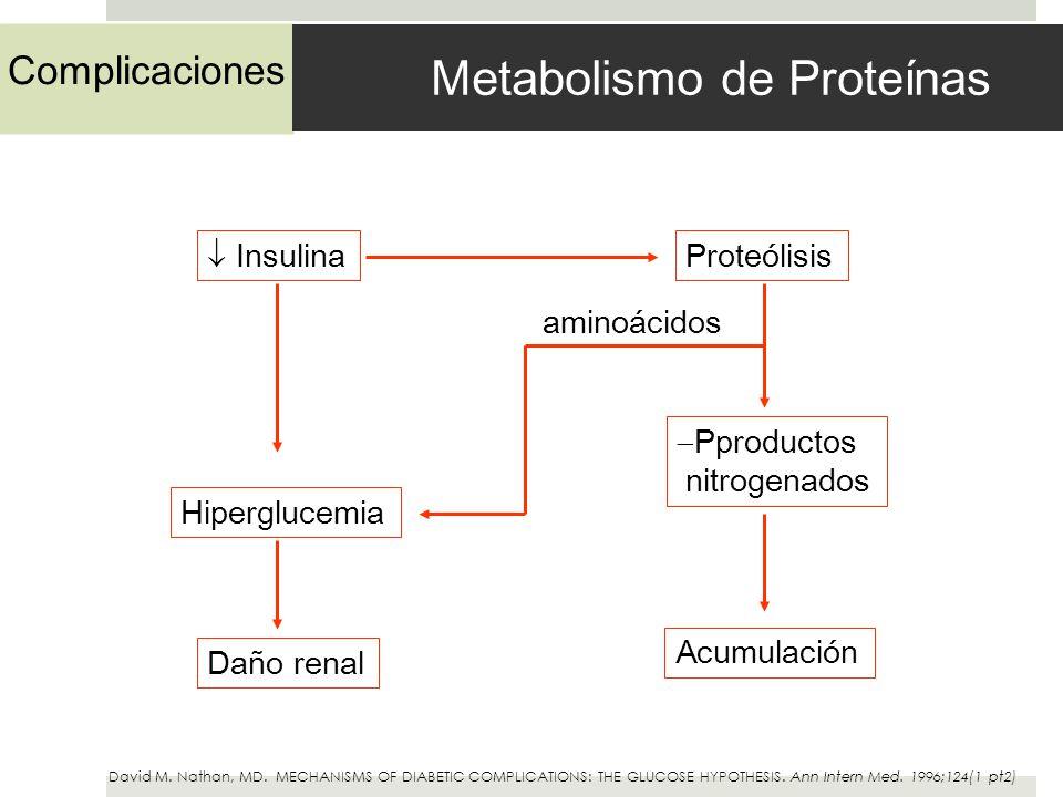 Complicaciones Metabolismo de Proteínas InsulinaProteólisis Hiperglucemia Pproductos nitrogenados Daño renal Acumulación aminoácidos David M. Nathan,