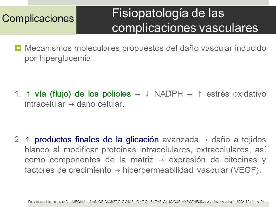 Fisiopatología de las complicaciones vasculares Mecanismos moleculares propuestos del daño vascular inducido por hiperglucemia: 1. vía (flujo) de los