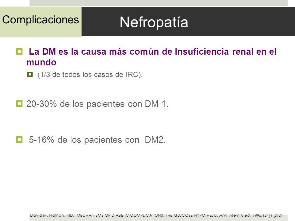 Nefropatía La DM es la causa más común de Insuficiencia renal en el mundo (1/3 de todos los casos de IRC). 20-30% de los pacientes con DM 1. 5-16% de