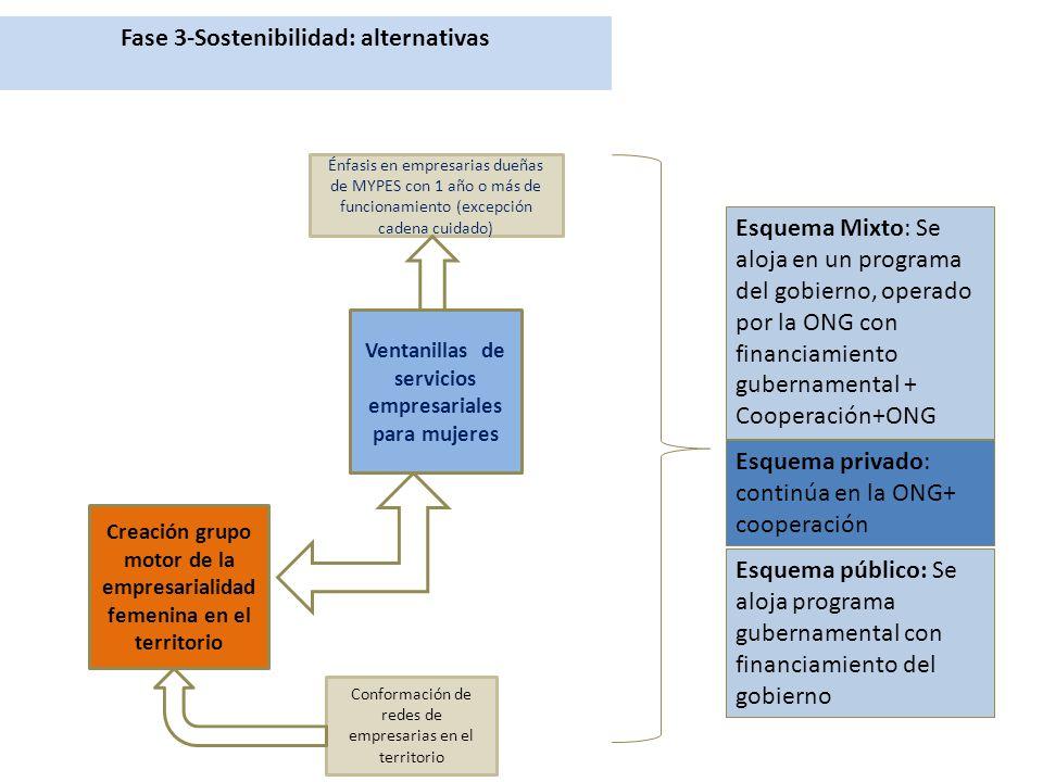 Fase 3-Sostenibilidad: alternativas Creación grupo motor de la empresarialidad femenina en el territorio Ventanillas de servicios empresariales para mujeres Énfasis en empresarias dueñas de MYPES con 1 año o más de funcionamiento (excepción cadena cuidado) Conformación de redes de empresarias en el territorio Esquema Mixto: Se aloja en un programa del gobierno, operado por la ONG con financiamiento gubernamental + Cooperación+ONG Esquema privado: continúa en la ONG+ cooperación Esquema público: Se aloja programa gubernamental con financiamiento del gobierno