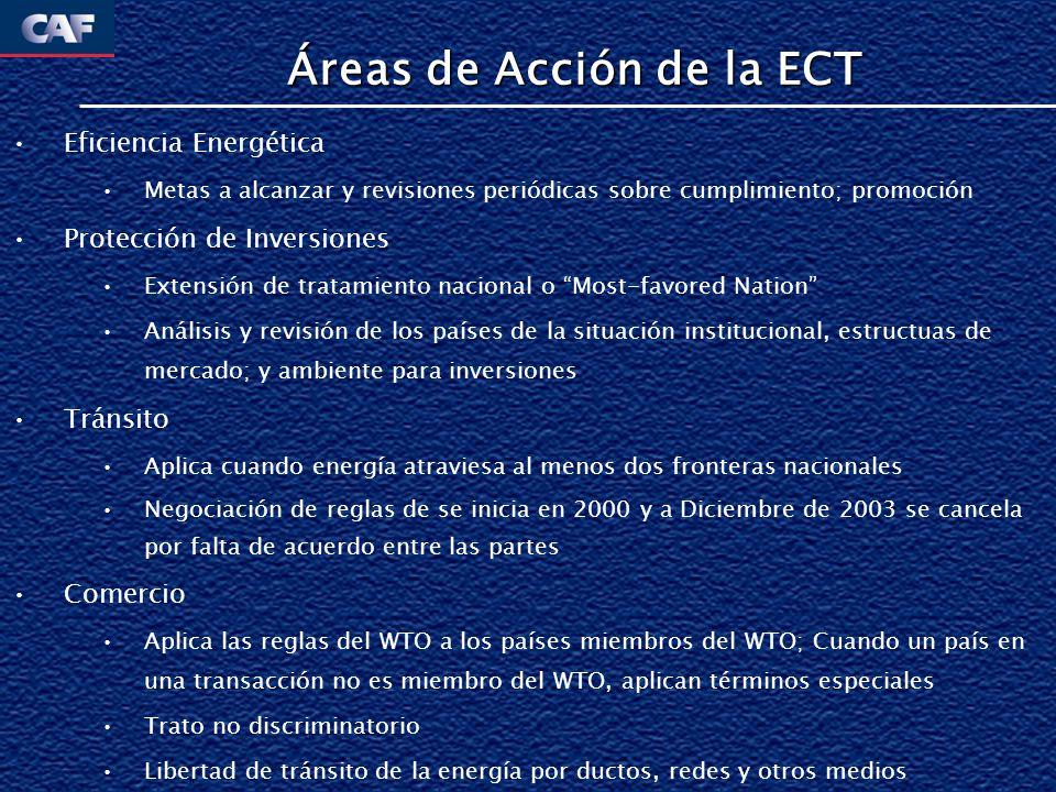 Áreas de Acción de la ECT Eficiencia Energética Metas a alcanzar y revisiones periódicas sobre cumplimiento; promoción Protección de Inversiones Exten