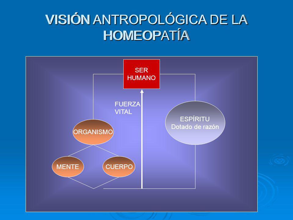 VISIÓN ANTROPOLÓGICA DE LA HOMEOPATÍA SER HUMANO ORGANISMO ESPÍRITU Dotado de razón FUERZA VITAL MENTECUERPO