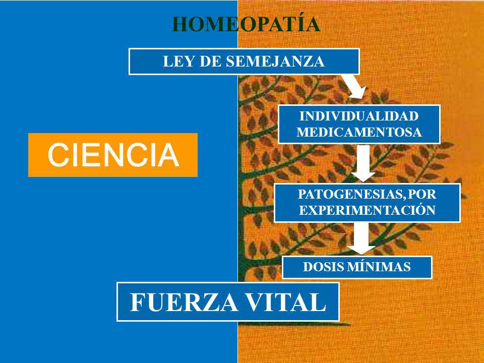 LEY DE SEMEJANZA INDIVIDUALIDAD MEDICAMENTOSA PATOGENESIAS, POR EXPERIMENTACIÓN DOSIS MÍNIMAS HOMEOPATÍA FUERZA VITAL LEY DE SEMEJANZA CIENCIA