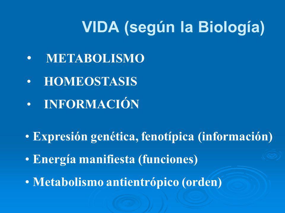 EL FENÓMENO HUMANO Y SU COMPLEJIDAD Cuando a la complejidad humana la estudiamos desde el psicologismo o el organicismo, desde el sociologismo o el culturismo, reducimos su integralidad.