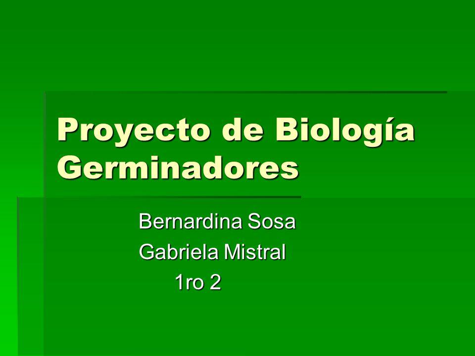 Proyecto de Biología Germinadores Bernardina Sosa Bernardina Sosa Gabriela Mistral Gabriela Mistral 1ro 2 1ro 2