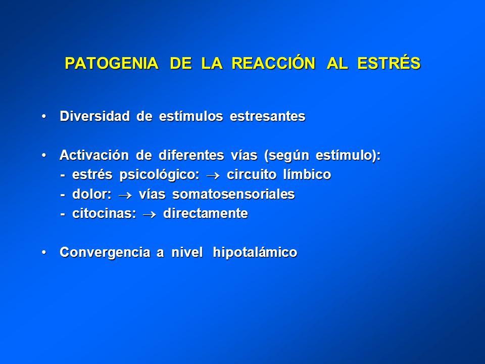 PATOGENIA DE LA REACCIÓN AL ESTRÉS Diversidad de estímulos estresantesDiversidad de estímulos estresantes Activación de diferentes vías (según estímul