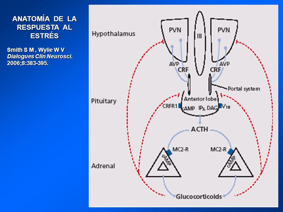 ANATOMÍA DE LA RESPUESTA AL ESTRÉS Smith S M, Wylie W V Dialogues Clin Neurosci. 2006;8:383-395.