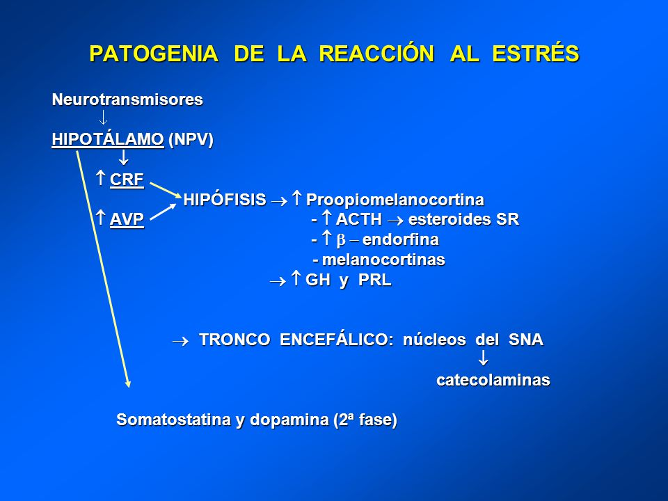 PATOGENIA DE LA REACCIÓN AL ESTRÉS Neurotransmisores HIPOTÁLAMO (NPV) CRF CRF HIPÓFISIS Proopiomelanocortina HIPÓFISIS Proopiomelanocortina AVP - ACTH