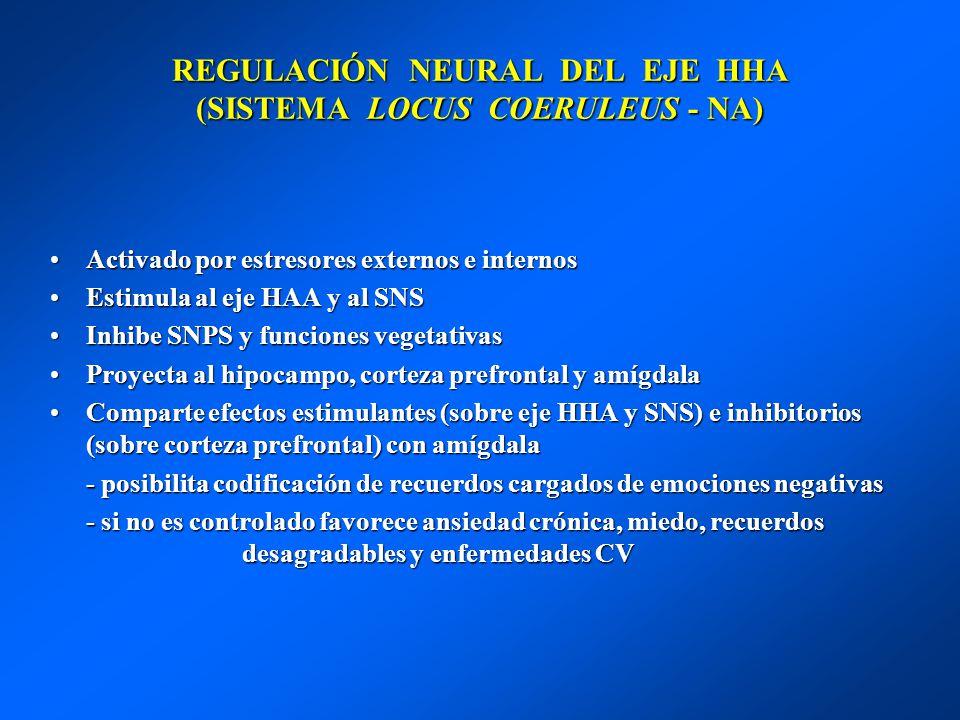 REGULACIÓN NEURAL DEL EJE HHA (SISTEMA LOCUS COERULEUS - NA) Activado por estresores externos e internosActivado por estresores externos e internos Es