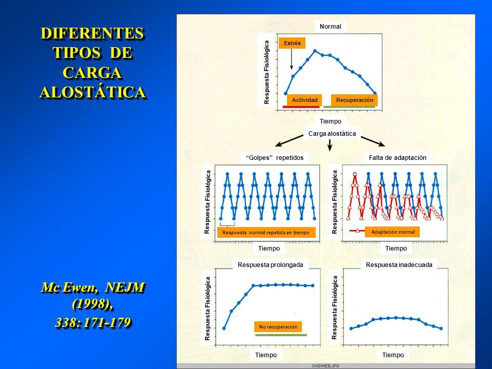 DIFERENTES TIPOS DE CARGA ALOSTÁTICA Mc Ewen, NEJM (1998), 338: 171-179 Normal Estrés ActividadRecuperación Tiempo Carga alostática Golpes repetidos R