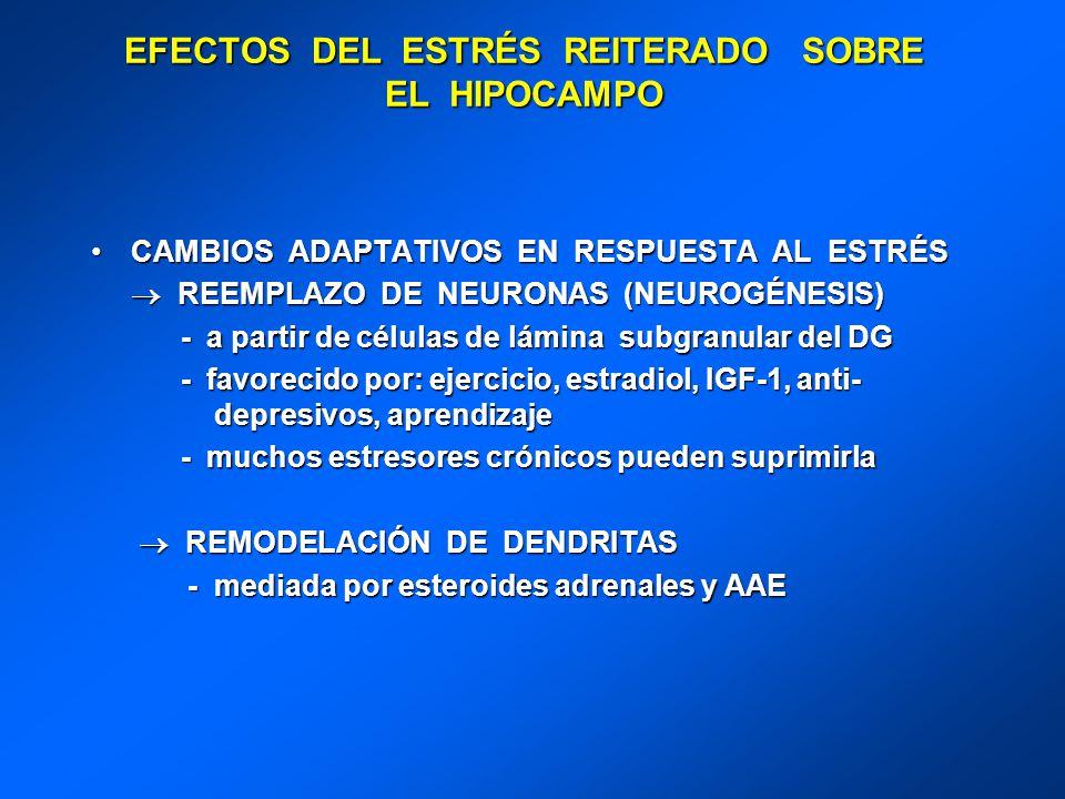 EFECTOS DEL ESTRÉS REITERADO SOBRE EL HIPOCAMPO CAMBIOS ADAPTATIVOS EN RESPUESTA AL ESTRÉSCAMBIOS ADAPTATIVOS EN RESPUESTA AL ESTRÉS REEMPLAZO DE NEUR