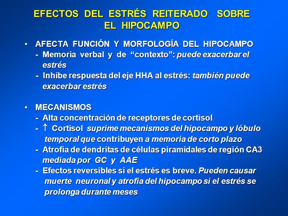 EFECTOS DEL ESTRÉS REITERADO SOBRE EL HIPOCAMPO AFECTA FUNCIÓN Y MORFOLOGÍA DEL HIPOCAMPOAFECTA FUNCIÓN Y MORFOLOGÍA DEL HIPOCAMPO - Memoria verbal y