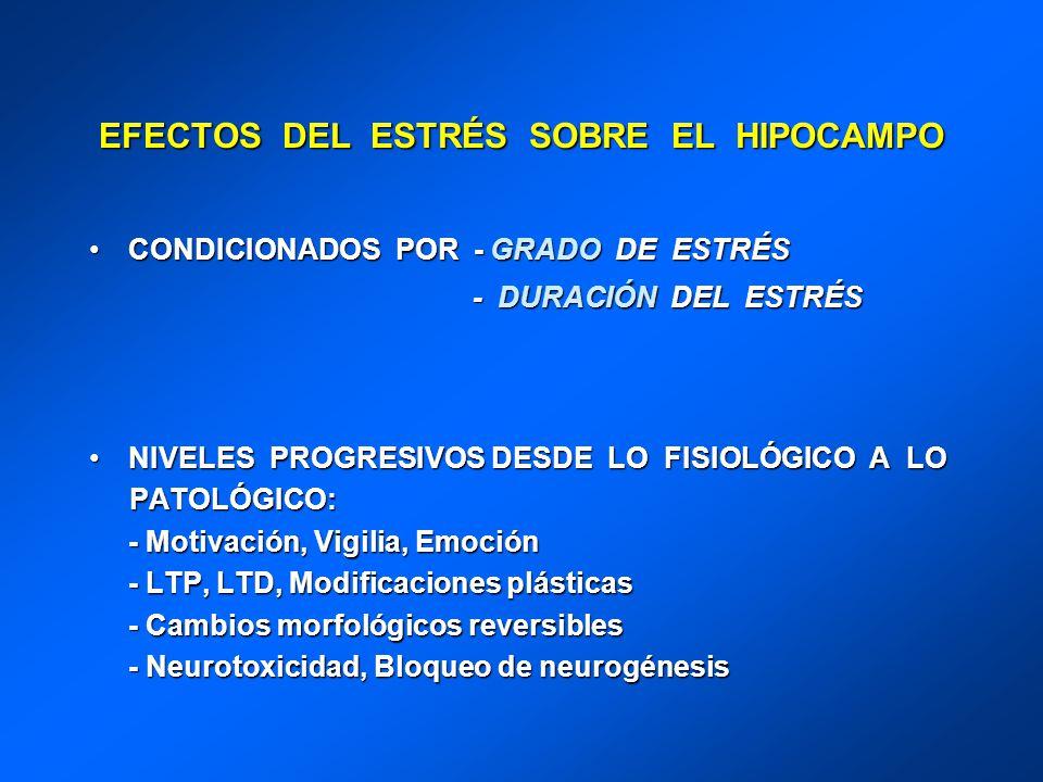 EFECTOS DEL ESTRÉS SOBRE EL HIPOCAMPO CONDICIONADOS POR - GRADO DE ESTRÉSCONDICIONADOS POR - GRADO DE ESTRÉS - DURACIÓN DEL ESTRÉS - DURACIÓN DEL ESTR