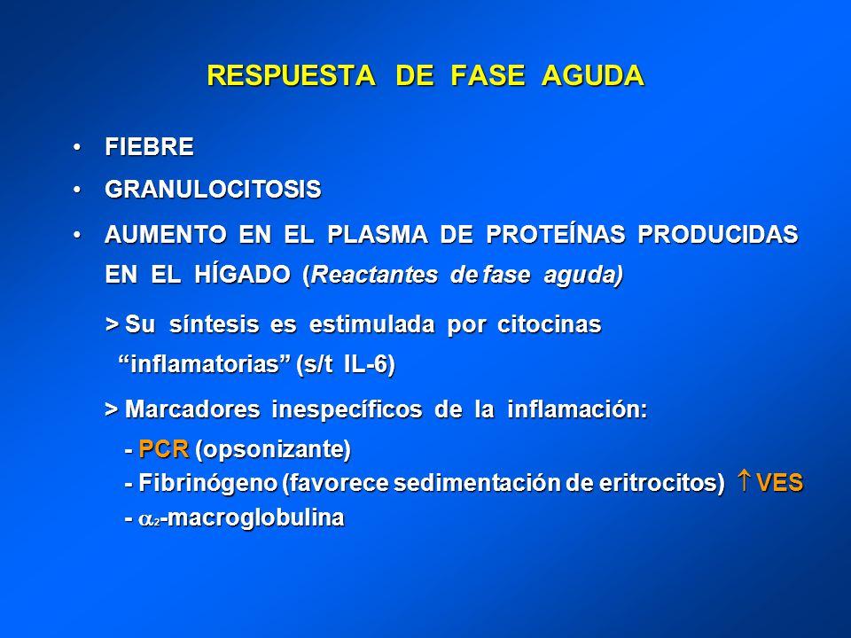 RESPUESTA DE FASE AGUDA FIEBREFIEBRE GRANULOCITOSISGRANULOCITOSIS AUMENTO EN EL PLASMA DE PROTEÍNAS PRODUCIDAS EN EL HÍGADO (Reactantes de fase aguda)