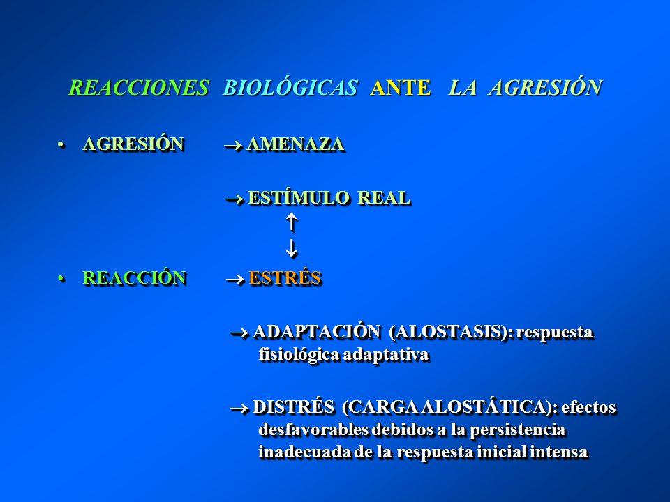 REACCIONES BIOLÓGICAS ANTE LA AGRESIÓN AGRESIÓN AMENAZAAGRESIÓN AMENAZA ESTÍMULO REAL ESTÍMULO REAL REACCIÓN ESTRÉSREACCIÓN ESTRÉS ADAPTACIÓN (ALOSTAS