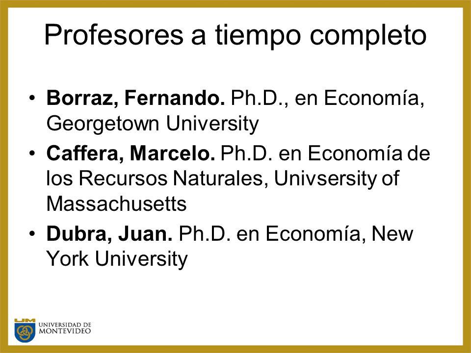 Profesores a tiempo completo Borraz, Fernando.