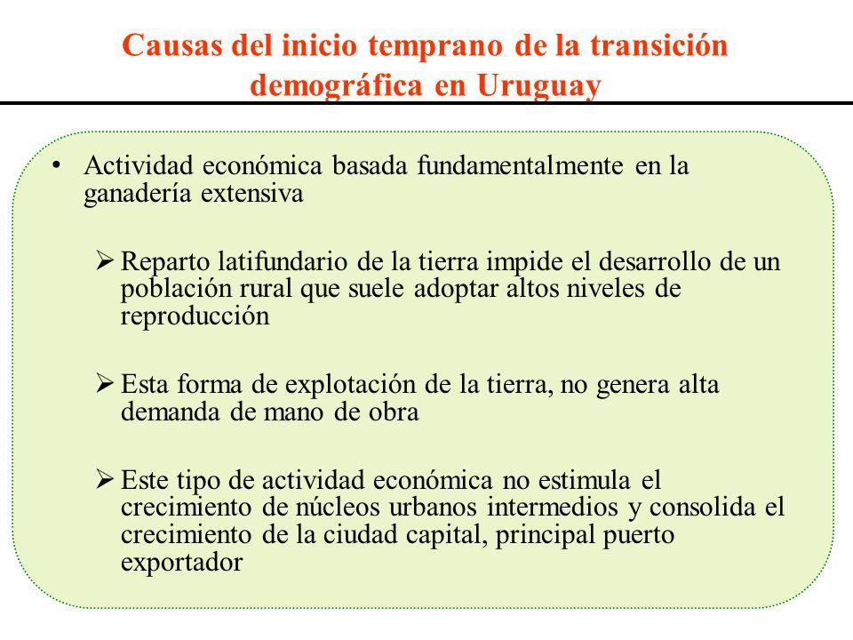 Causas del inicio temprano de la transición demográfica en Uruguay Actividad económica basada fundamentalmente en la ganadería extensiva Reparto latif