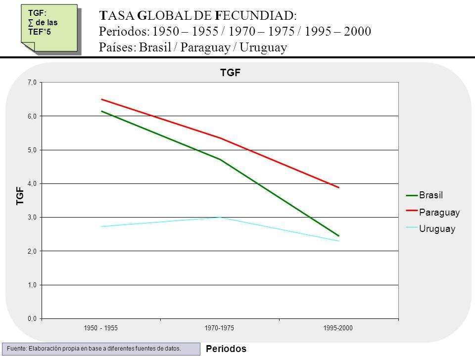 TASA GLOBAL DE FECUNDIAD: Periodos: 1950 – 1955 / 1970 – 1975 / 1995 – 2000 Países: Brasil / Paraguay / Uruguay TGF: de las TEF*5 TGF: de las TEF*5 TG