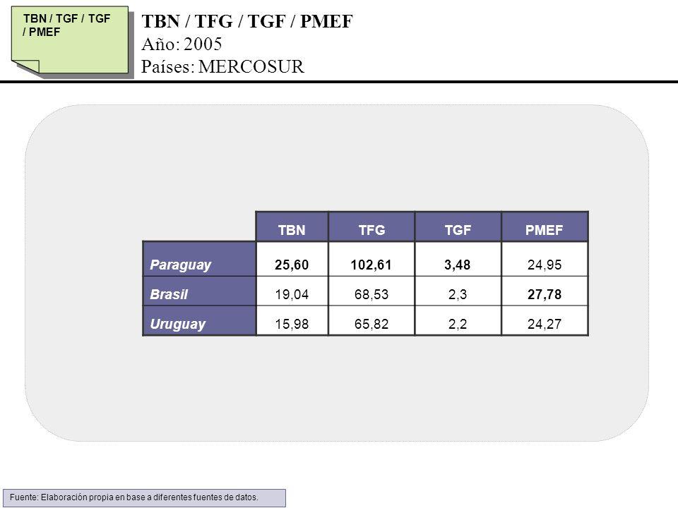 TBN / TFG / TGF / PMEF Año: 2005 Países: MERCOSUR TBN / TGF / TGF / PMEF TBNTFGTGFPMEF Paraguay25,60102,613,4824,95 Brasil19,0468,532,327,78 Uruguay15