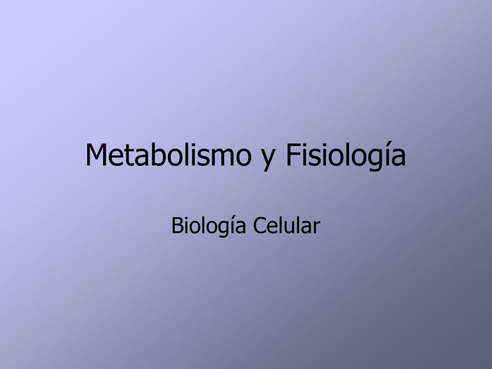 Metabolismo y Fisiología Biología Celular