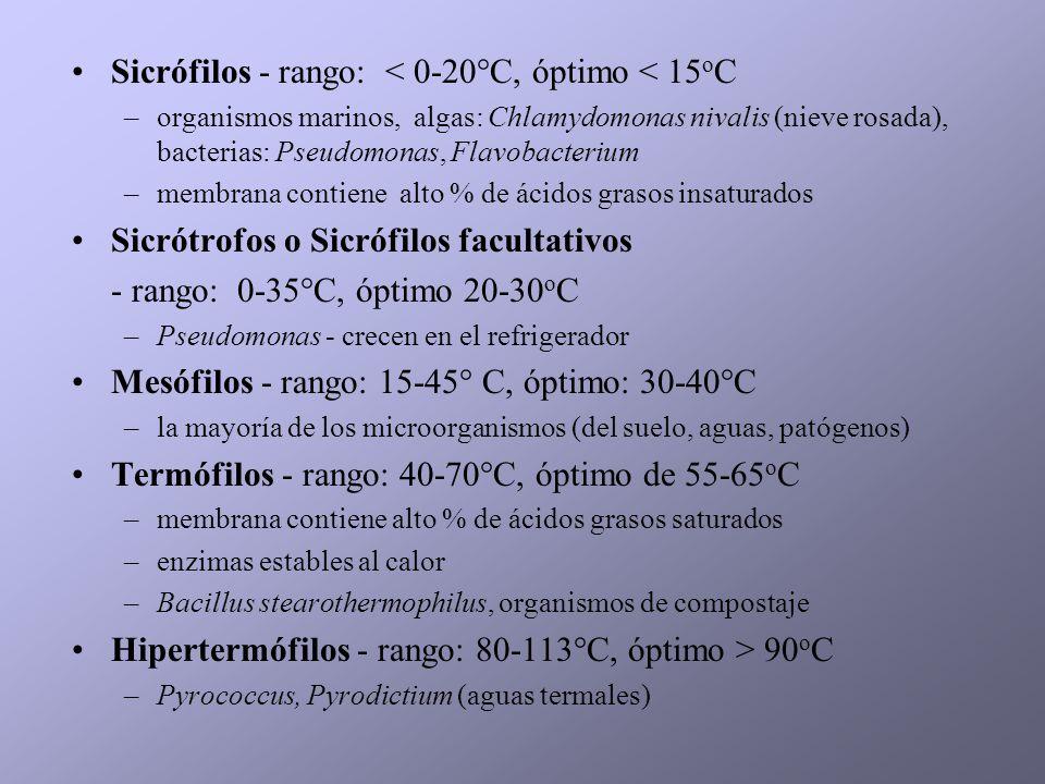 Sicrófilos - rango: < 0-20°C, óptimo < 15 o C –organismos marinos, algas: Chlamydomonas nivalis (nieve rosada), bacterias: Pseudomonas, Flavobacterium
